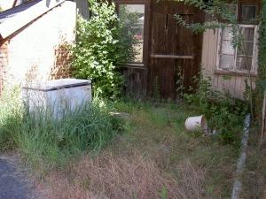 Mit einer Motorsense kann man Wildwuchs im Garten einfach entfernen