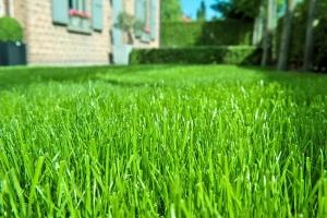 Ein kräftiger und dichter Rasen: So wünscht sich jeder Hobbygärtner das Grün im eigenen Garten. Wächst der Rasen schwach oder bildet sich viel Moos, kann dies an zu sauren Bodenverhältnissen liegen. Foto: djd/Deutsche CUXIN Marketing GmbH
