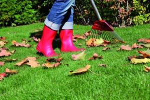 txn. Wichtig: Im Herbst das Gras und den Boden stärken, damit die Rasenfläche optimal auf die Belastung des Winters vorbereitet ist. Foto: Neudorff/txn