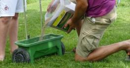 Foto: Hauert. - Besonders gleichmäßig verteilen lässt sich Düngergranulat mit einem Streuwagen. Pro Quadratmeter reichen etwa 30 Gramm aus.