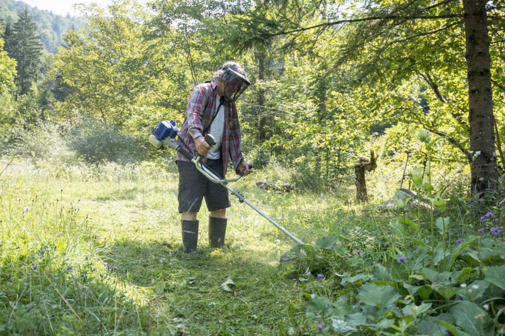 Die Arbeitssicherheit sollte beim Arbeiten mit einer Motorsense nicht vernachlässigt werden Foto: Gajus / shutterstock.com